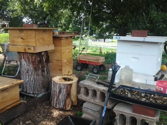 Bee Farming Bee Ginnings - Somewhat conventional and natural hybrid hive boxes for local bees.